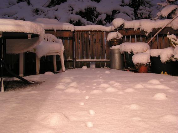 Nachtbild 005: Schneeterasse 2003